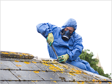 Asbestos Removal Services in Melbourne